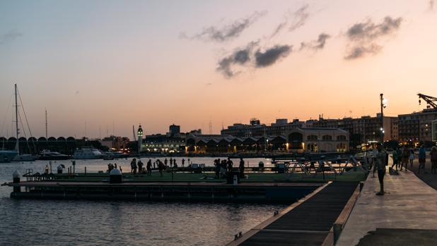 El Shark Film Festival llega a Valencia
